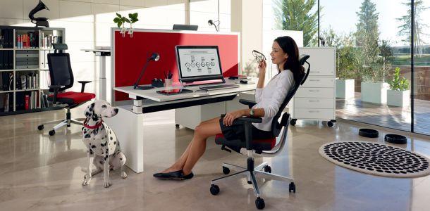 vendita e fornitura mobili e sedie per ufficio barra. Black Bedroom Furniture Sets. Home Design Ideas